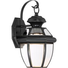 Quoizel NYCL8407K - Newbury Clear LED Outdoor Lantern