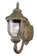 Amlite OW2047SGC - 1 Light Outdoor Lantern